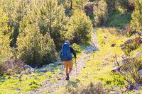 Summer hike