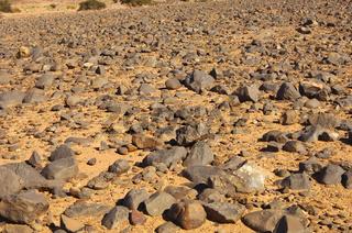 Hammada Wüstenlandschaft, Plateau Mesak Settafek