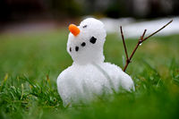 Small snowman braves the thaw period