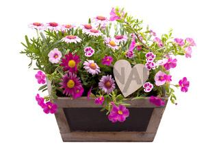 Bunt bepflanzte Blumenschale mit Herz