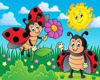 Happy ladybugs on meadow image 1