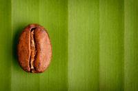 Fair trade organic coffee bean
