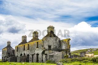 Ruine bei Ballinskelligs