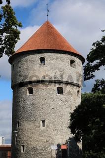 Estland, Tallinn, Kiek in de Kök, Kanonenturm
