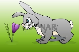 Hase aufeiner Blumenwiese