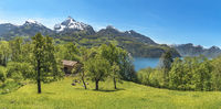 Swiss landscape with mountains and meadows