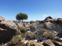rocky mountains in winter - arid desert landscape
