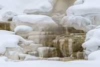travertine terraces...  Mammoth Hot Springs *Yellowstone, USA*