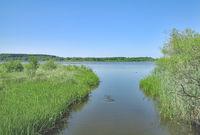D--Westerwald--am Dreifelder Weiher in der Seenplatte (2).jpg