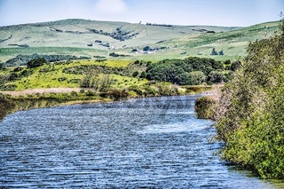 tomales bay in point reyes national seashore park near san francisco