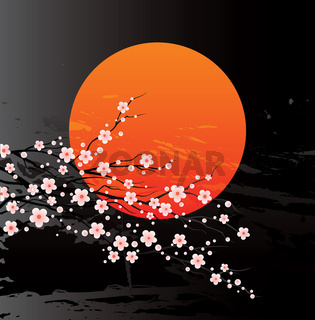Vector illustration of a cherry twigs in bloom