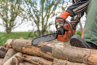 Brennholzsägen mit einer Motorsäge