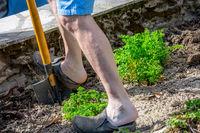 Man digginf in field using spade