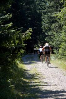 Bergradler