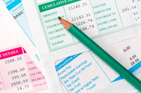 Several statements of payroll details