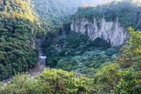 Mountain rainforest, near the waterfall Pailon del Diablo in the Andes. Banos. Ecuador