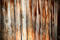 The old wood texture with natural patterns of decay on surface. Shabby Wood Background