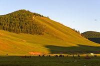 Hügellandschaft im Orchon-Tal