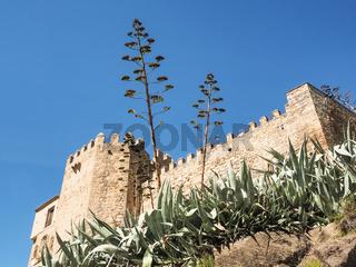 Kloster monasterio des los Reyes mit Agaven, Toledo, Spanien