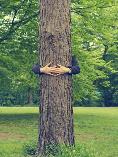 Man hugs a big tree