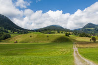 green meadow in bavaria