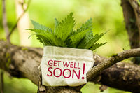 """Stinging Nettle in a jute bag with the word """"Get well soon!"""""""