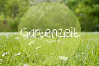 Gras Meadow, Daisy Flowers, Gartenzeit Means Garden Time