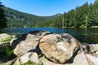 Arber lake