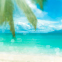Defocused tropical beach. Perfect vacation background.