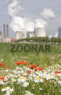 Braunkohlekraftwerk mit Mohn, Deutschland