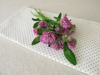 Bouquet of red clover