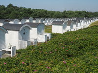 Beach huts in skanör,  kämpinge beach, baltic sea