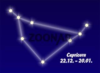 Capricorn, Steinbock