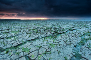 cracked mud at low tide