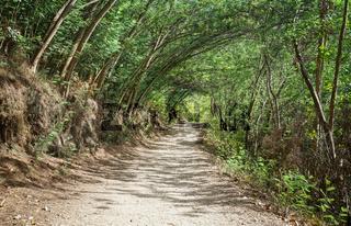 Jakobsweg, Galizien, Spanien