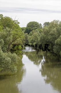 Idyllisches Altwasser in Regensburg