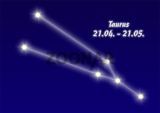 Taurus, Stier