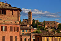 Old Town of Siena with a view on the Basilica dei Servi