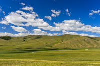 Rolling hills in the Mongolian steppe, Orkhon Valley, Mongolia