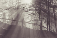 Hiker in a foggy forest