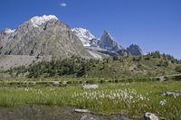In Val Veny near Monte Bianco