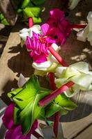 Polynesian flower necklace