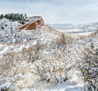 Colorado foothills in fresh snow