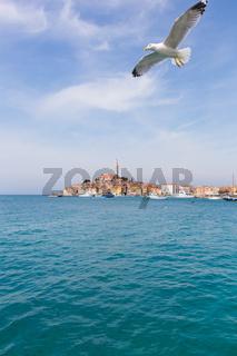 Beautiful View Of Rovinj City, Croatia, Europe