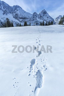 Alpine path of footsteps in the snow