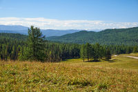 Altai mountains grassland and forest landscape