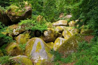 Wald von Huelgoat  Le Menage de la Vierge in der Bretagne, Frankreich - Huelgoat forest  Le Menage de la Vierge in Brittany, France