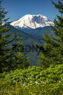 Mt. Rainier Washington State