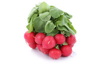 Radieschen frisch Gemüse Freisteller freigestellt isoliert