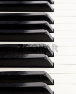 Macro image of quality piano keys from grand piano